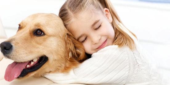 La-Pet-Therapy-2-800x400-800x400.jpg